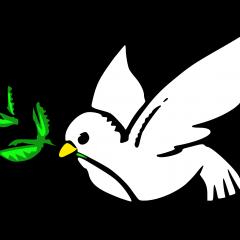 The Dove (Jonah Reimagined)