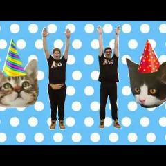 It's time for a CAT PARTY
