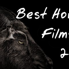 The Best Horror Films of 2016